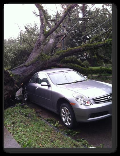 130812 Car Crushed 3